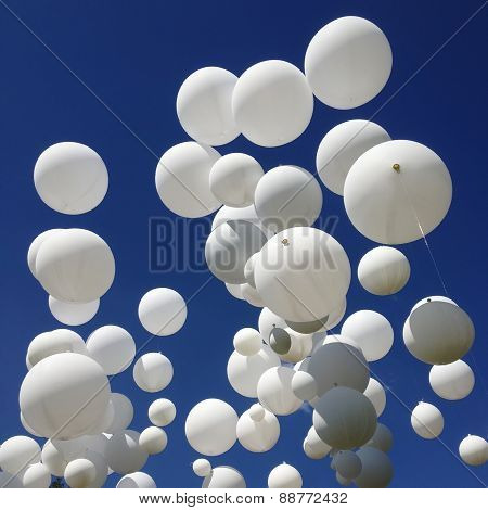 White balloons in the sky