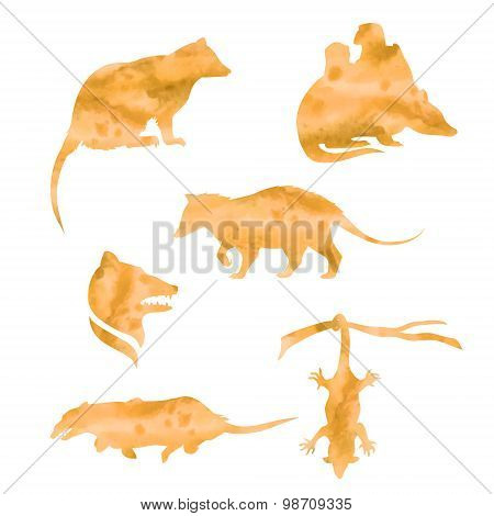 Vector watercolor silhouettes of a opossum.