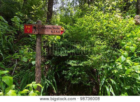 Touristic Signpost For Levada Walk In Madeira