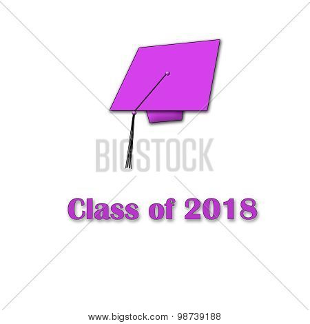 Class of 2018 Pink on White Large Single