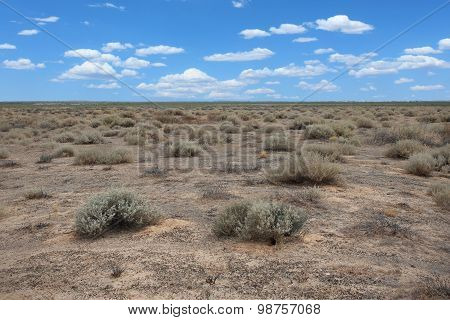 Dry Desert Land by the Sea of Cortez Sonora, Mexico