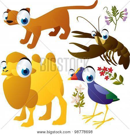 funny vector animals set: fossa, camel, lobster, bird