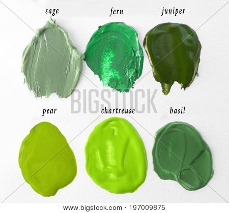 Smears of green color palette on white background