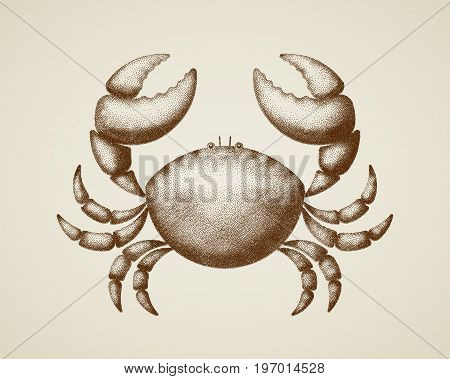 Vector crab painted in engraving style. Eps8. RGB Global colors