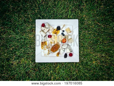 Cheese plate with many kinds of cheese. Exposed on a beautifully trimmed lawn, on a warm summer day.Cheese bar.
