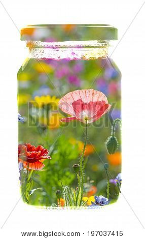 Jar glass with summer picture isolated on white background - art concept