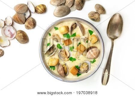A photo of a bowl of clam chowder, decorated with fresh parsley and croutons, with clam shells, shot from above, with a spoon, on a white background