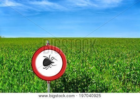 Borreliose and tick warning round red warning sign with tick symbol in front of a green meadow.