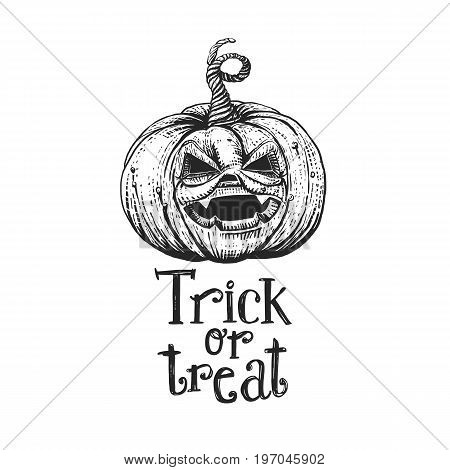 Trick or treat holidays quote on hand drawn pumpkin. Vector art. Unique design element for poster or banner. Happy Halloween typography symbol with pumpkin and lettering. Sketch style.