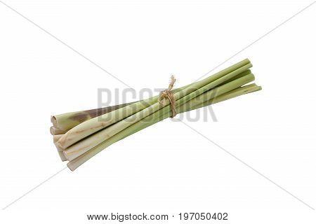 Bundle Of Lemon Grass Isolated On White