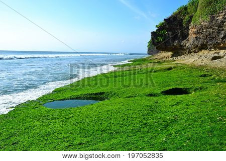 Dreamland beach, Bali, Indonesia - July 2017: The beautiful landscape near the ocean