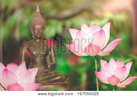 Buddha statue  and lotus flower foreground soft light, Visakha Puja Day.Buddhist holiday .lotus flower and buddha statue with double exposure