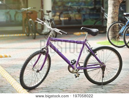 Modern bicycle parked outdoors