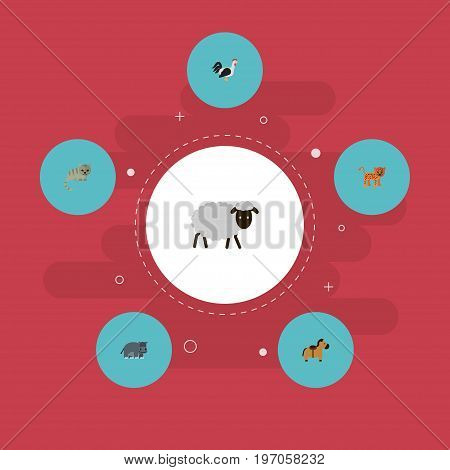 Flat Icons Panther, Rooster, Kitty And Other Vector Elements