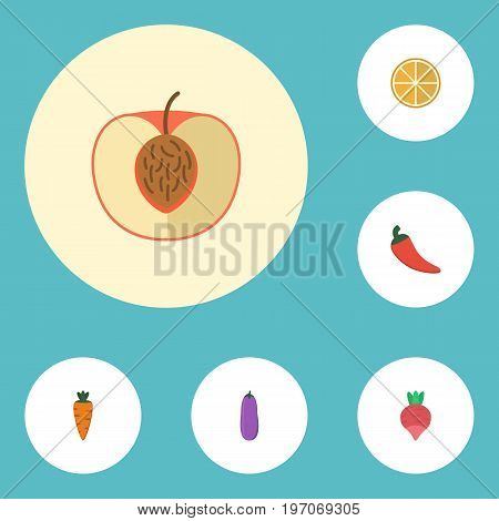 Flat Icons Aubergine, Citrus, Root And Other Vector Elements