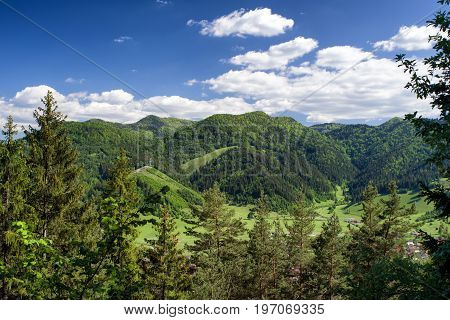 Beaufiful green coniferous forest landscape. Great Fatra mountains Slovakia