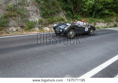 GOLA DEL FURLO, ITALY - MAY 19: ARNOLT BRISTOL BOLIDE 1954 1 on an old racing car in rally Mille Miglia 2017 the famous italian historical race (1927-1957) on May 19 2017
