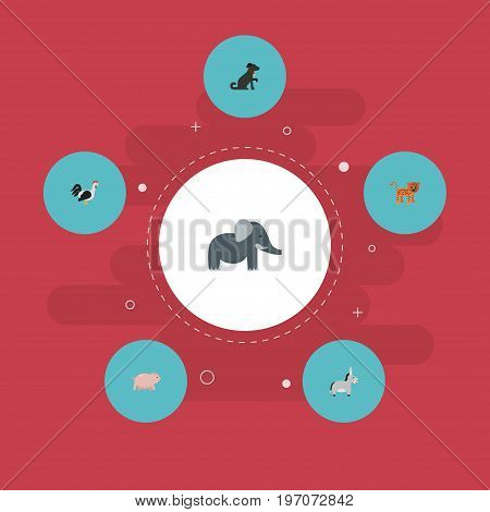 Flat Icons Hound, Jackass, Rooster And Other Vector Elements