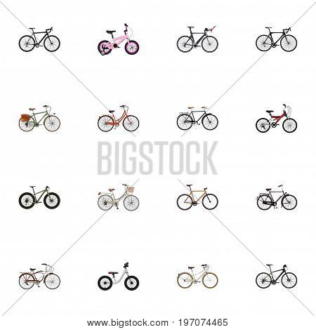Realistic Training Vehicle, Cyclocross Drive, Journey Bike And Other Vector Elements