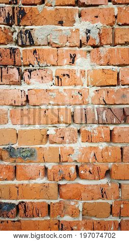 Background brick wall with black spots. texture. brickwork