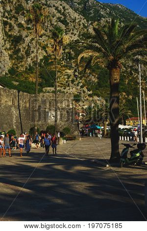 Ancient fortress of Kotor in Montenegro. Tourists and visitors of the fortress walk along the stone pavement along the fortress wall in the shade of tropical palms.