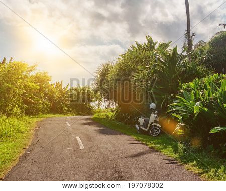 Tropical landscape with empty road and green roadside. Tropic forest travel by bike. Wild nature road journey concept image. Tropical paradise travel banner