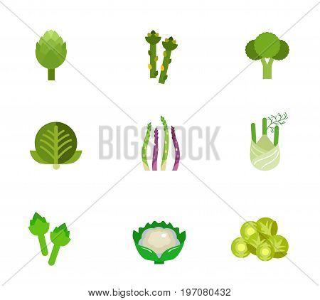 Green vegetable icon set. Artichoke Asparagus Broccoli Cabbage Asparagus stem Fennel Artichoke Cauliflower Brussel sprout