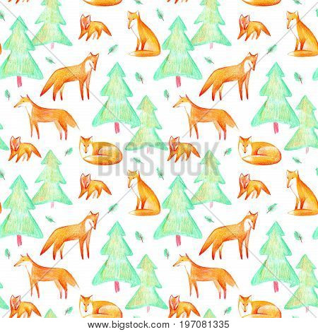 Seamless pattern of a fox and spruce.Forest animals.Watercolor and pencil color hand drawn illustration.White background.