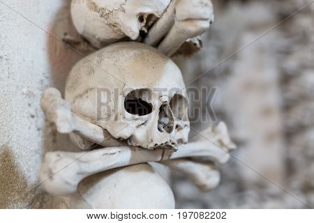 Ancient human skull and bone decoration in Sedlec Czech republic. Kutna Hora.