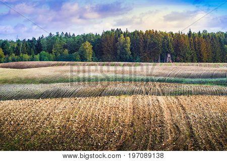 Wildlife observation point on the plowed field. September landscape. masuria Poland.