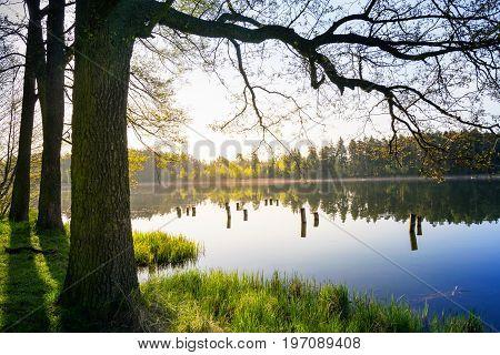 Quiet lake - spring landscape. Masuria Poland.