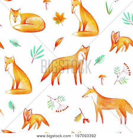 Seamless pattern of a fox, plants, rowan and mushroom. Forest animals and herbs. Watercolor and pencil color hand drawn illustration.White background.