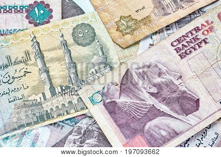 Close Up Picture Of Egyptian Pounds.