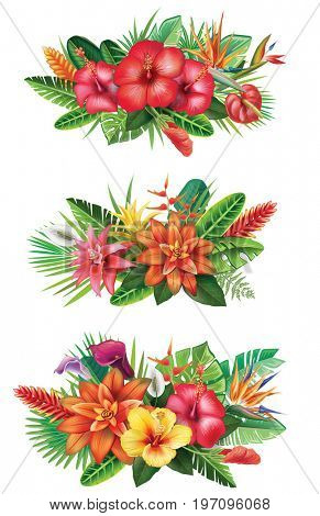 Arrangement from tropical flowers. Raster version