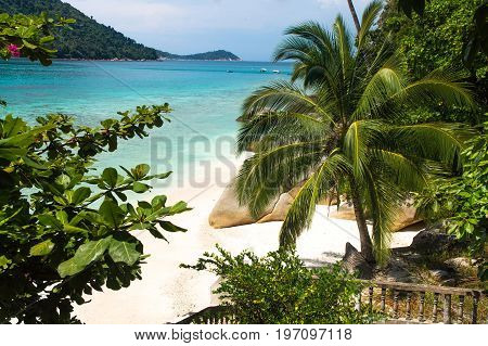 Relax on a deserted beach in an island of Tropical paradise. White sand beach with huge stones. old railing and palm tree at Pulau Perhentian Malaysia.