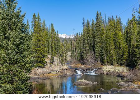 A mountain stream gurgles from snow-capped peaks in the wilderness near Yellowstone