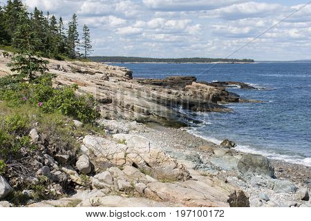 Schoodic Point Coast