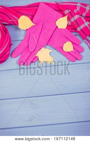 Vintage Photo, Autumnal Leaves With Gloves And Shawl For Woman, Clothing For Autumn Or Winter, Copy