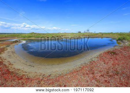 small lake on seashore in summer time