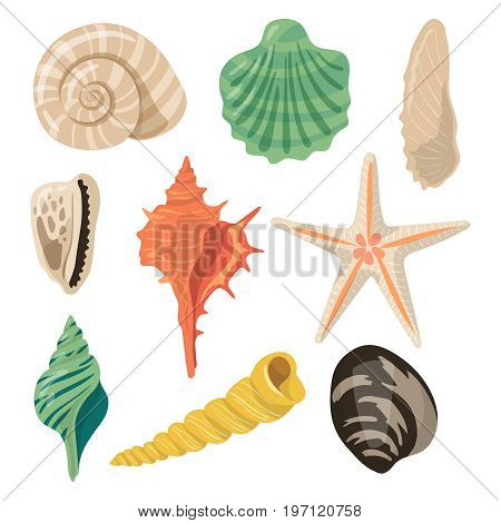 Shells of sea in sand. Aquatic vector icons in cartoon style. Seashell and marine scallop illustration