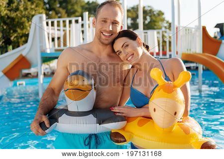 Cute couple. Beautiful young couple standing in the swimming pool and wearing animal-shaped swim rings while smiling at the camera pleasantly