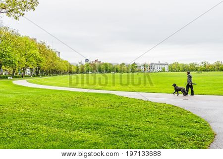 Quebec City, Canada - May 30, 2017: Man Walking Dog On Anneau De Rollerblades In Terrain Des Sports,