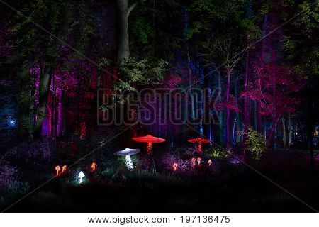 MOSCOW, JUL. 23, 2017: Night lights show