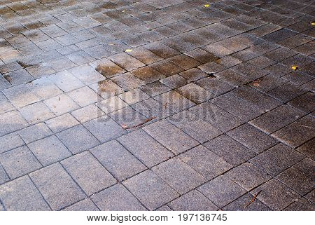 gray and wet paving slabs background and texture