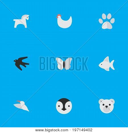 Elements Foot, Cock, Flightless Bird And Other Synonyms Cock, Flightless And Crane.  Vector Illustration Set Of Simple Fauna Icons.
