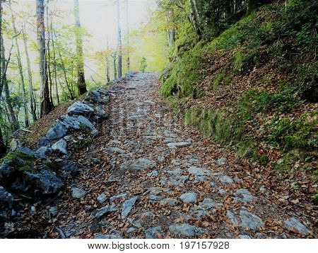 Magic and lonely road in the National Park of Ordesa and Monte Perdido (Spain)