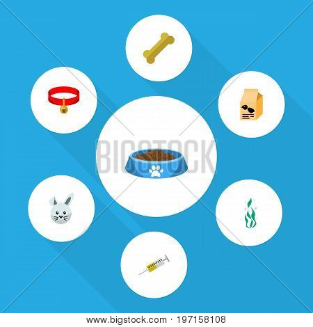 Flat Icon Pets Set Of Bunny, Kitty Collar, Nutrition Box And Other Vector Objects