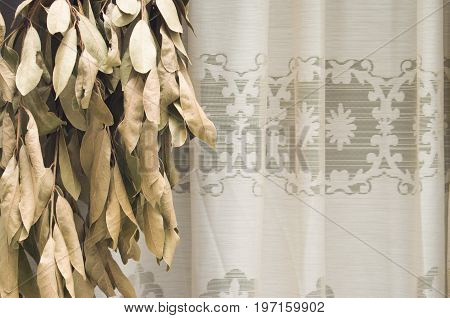 Leaves(Sheets) of laurel you dry in horizontal