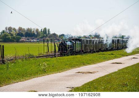 Narrow Gauge Steam Train