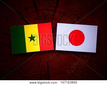 Senegal Flag With Japanese Flag On A Tree Stump Isolated